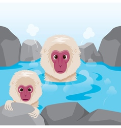 Snow monkey relaxing in hot spring vector