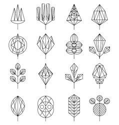 Flower and Tree Abstract Icons vector image vector image