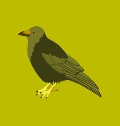 in flat style of raven vector image