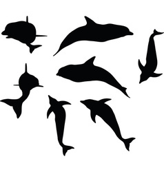 Dolphin silhouette isolated vector