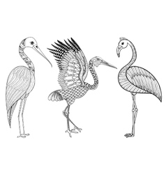 Zentangle Hand drawn Stork Flamingo Brolga for vector image