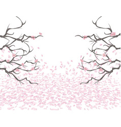 Almost bare branches of a pink cherry on both vector