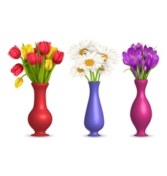 Flowers in vases isolated on white vector