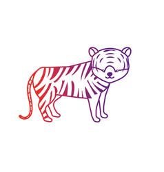 line cute tiger wild animal icon vector image