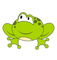 Cartoon sitting frog Isolated vector image vector image