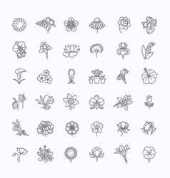 Flower icon set - vector