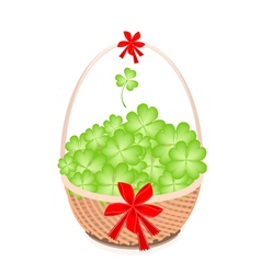 A Brown Basket of Lovely Four Leaf Clovers vector image vector image