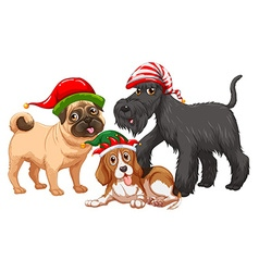 Christmas theme with dogs wearing christmas hats vector image