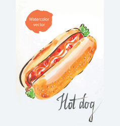 hot dog watercolor vector image vector image