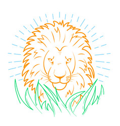 icon of a lion in the grass vector image vector image