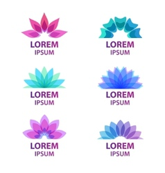 set of colorful flower icons vector image vector image