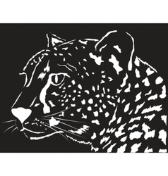 Portrait of a leopard vector