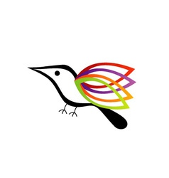 A bird with colorful wings vector