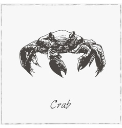 Crab hand drawn sketch collection of seafood vector