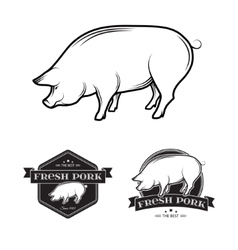 Pork labels vector