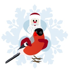 Bullfinch in the hands of santa claus vector