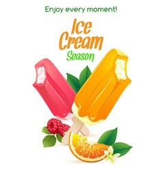Orange and raspberry popsicle ice-cream colorful vector image