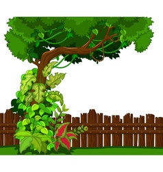 Wooden fence and tropical tree vector