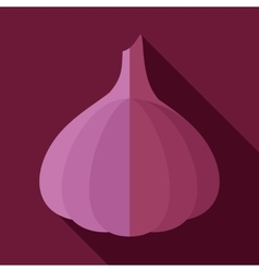 Garlic flat icon with long shadow vector