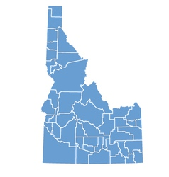 State Map Of Idaho vector image vector image