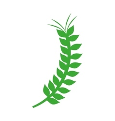 Green branch of olive with leaves vector