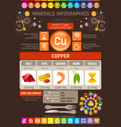 Copper mineral supplements rich food icons vector