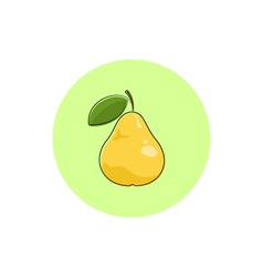 Icon colorful pear vector