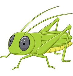 Cute grasshopper posing isolated vector
