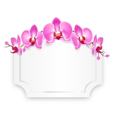 Pink orchid flowers with celebration frame vector