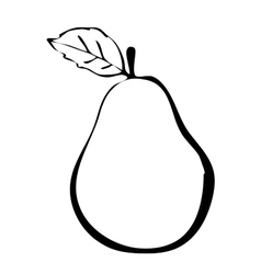 Hiqh quality pear drawn in outline vector image vector image