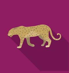 leopardafrican safari single icon in flat style vector image