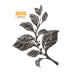 Mate branch shape 3 vector
