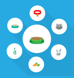 Flat icon animal set of bunny kitty feeding and vector