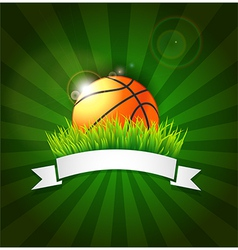 Basketball ball on field grass vector