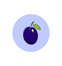 Icon colorful plum vector