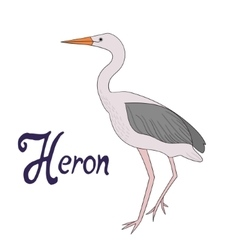 Bird heron vector