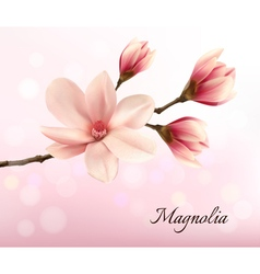 Branch with two pink magnolia flowers vector