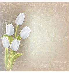 Abstract floral grunge background with white vector