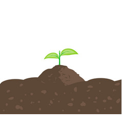 Sprout in the ground vector