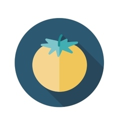 Tomato flat icon with long shadow vector