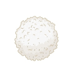White blood cell leukocyte vector