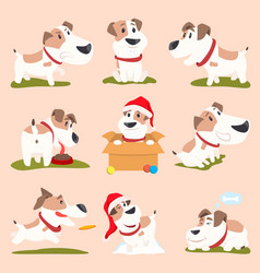 closeup of funny poster dogs vector image