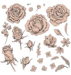 doodle flowers1 2 vector image