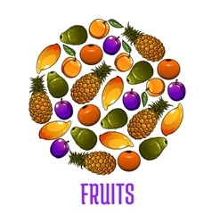 Emblem of fresh fruits icons in circle shape vector image vector image