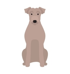 Flat dog pet and sitting cute vector