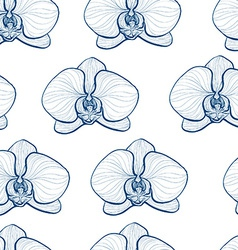 Orchids3 vector image