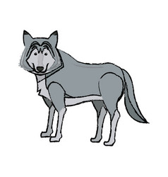 Portrait of wolf husky animal wildlife image vector