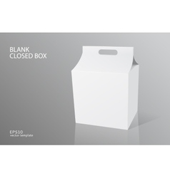 blank packing closed box vector image vector image