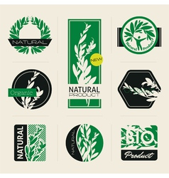 Nature-themed labels vector image vector image