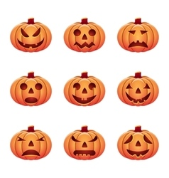 Set of isolated pumpkins on white background vector